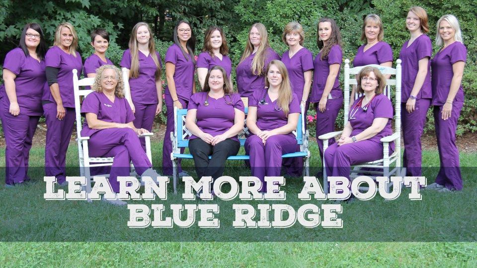 Home Blueridge Animal Hospital