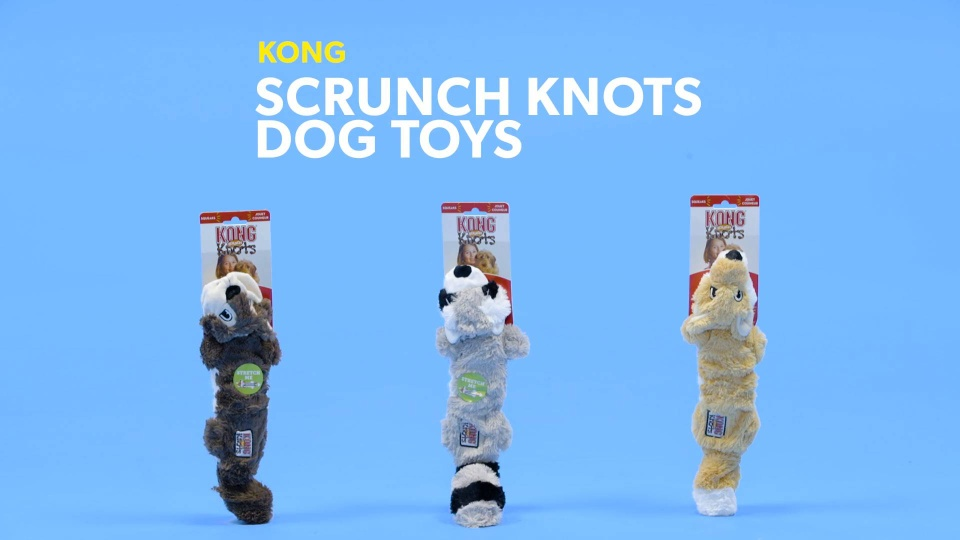 453ea19719f8 KONG Scrunch Knots Raccoon Dog Toy, Small/Medium - Chewy.com