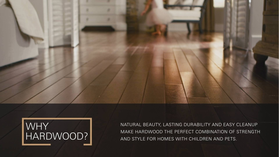 Flooring In South St Paul Mn From Bauer Floor Covering
