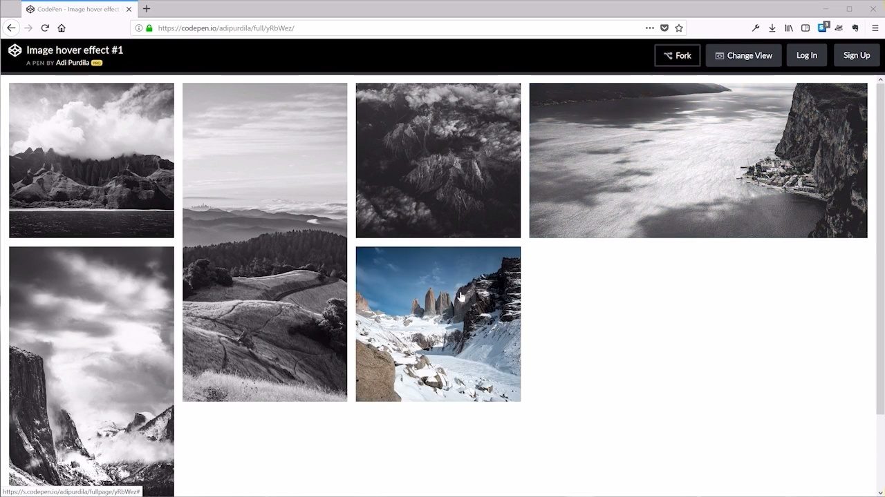 Image Hover Zoom Effect In Css Codepen Information and Ideas - Herz