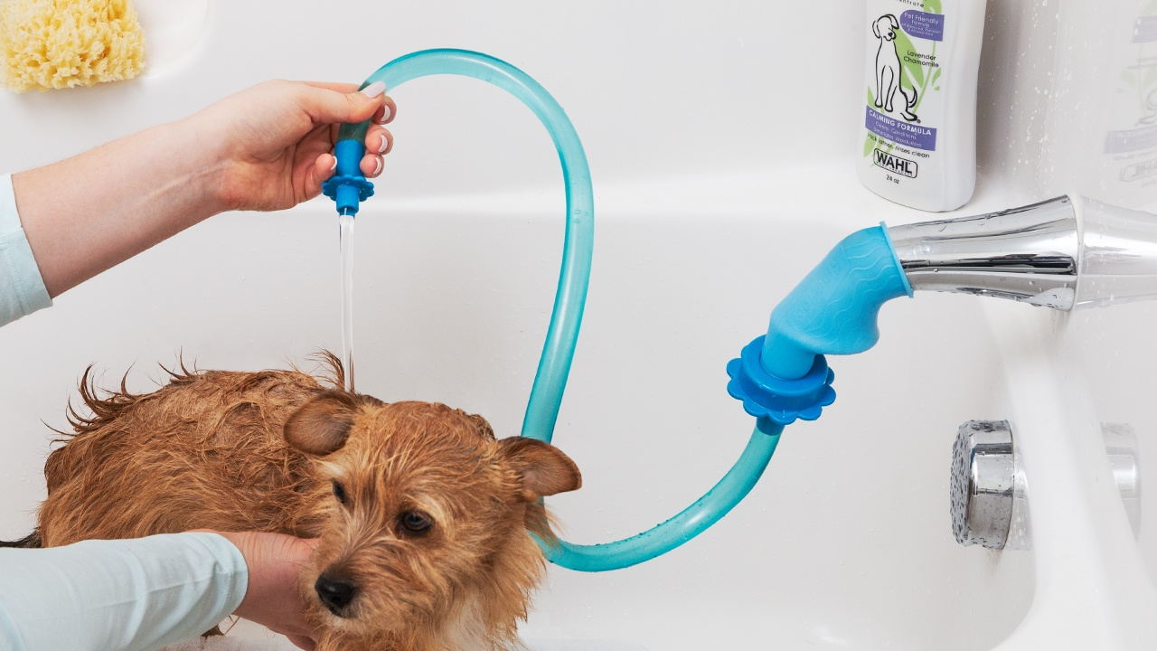 Pet Shower Sprayer Cleaning Attachment By Rinseroo The Grommet