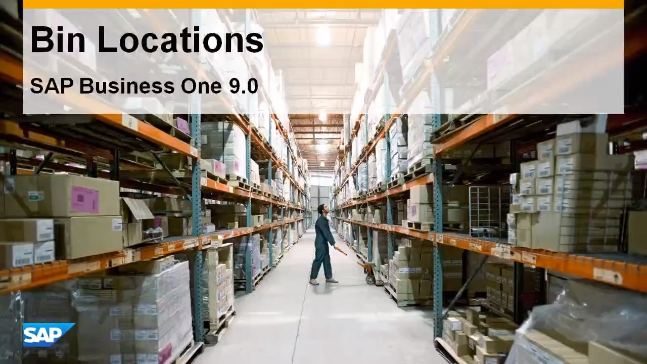 Bin Locations in SAP Business One 9 0 - Feature Clip