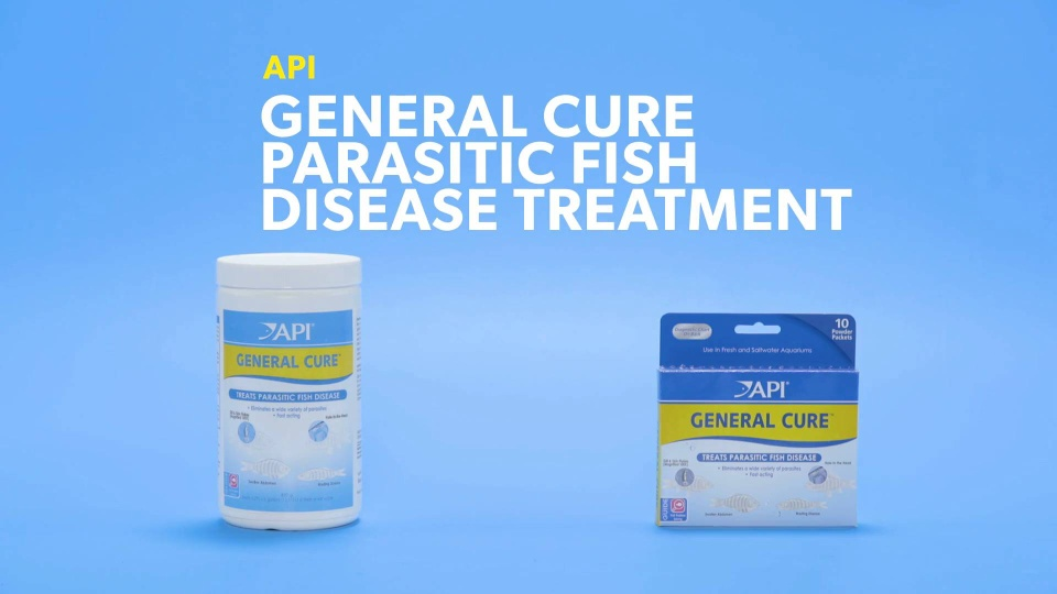 API General Cure Freshwater & Saltwater Aquarium Parasitic