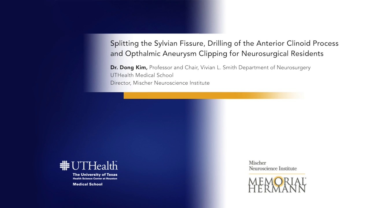 Splitting the Sylvian Fissure, Drilling of the Anterior Clinoid Process and  Opthalmic Aneurysm Clipping