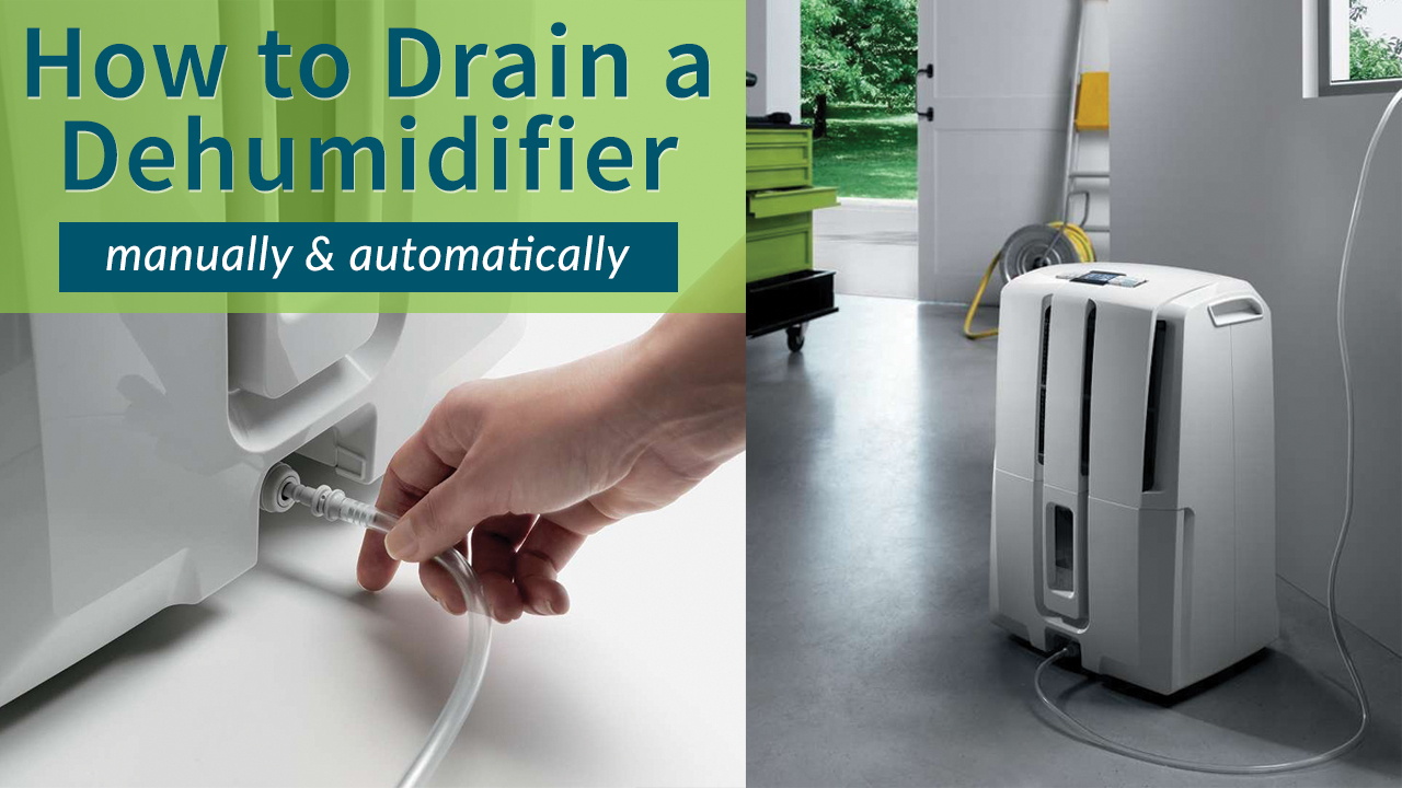 . Dehumidifiers  Frequently Asked Questions   Sylvane