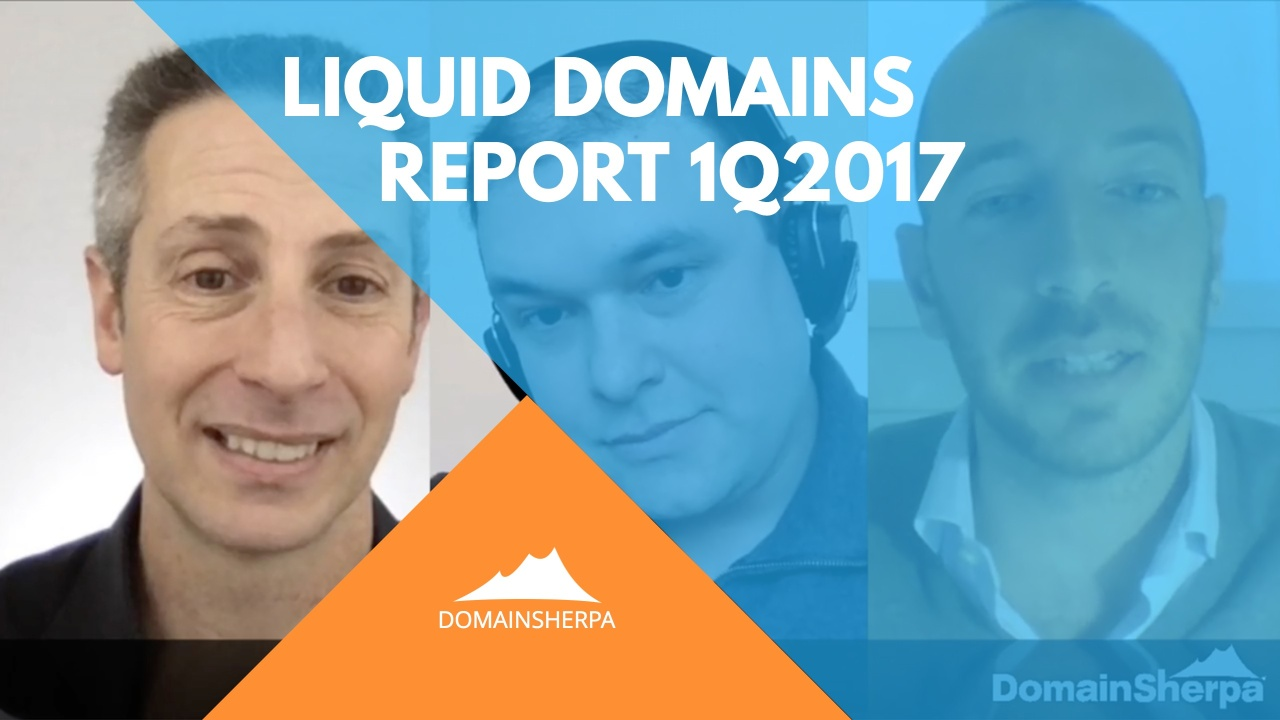 Liquid-Domains-Report-1Q2017-on-DomainSherpa
