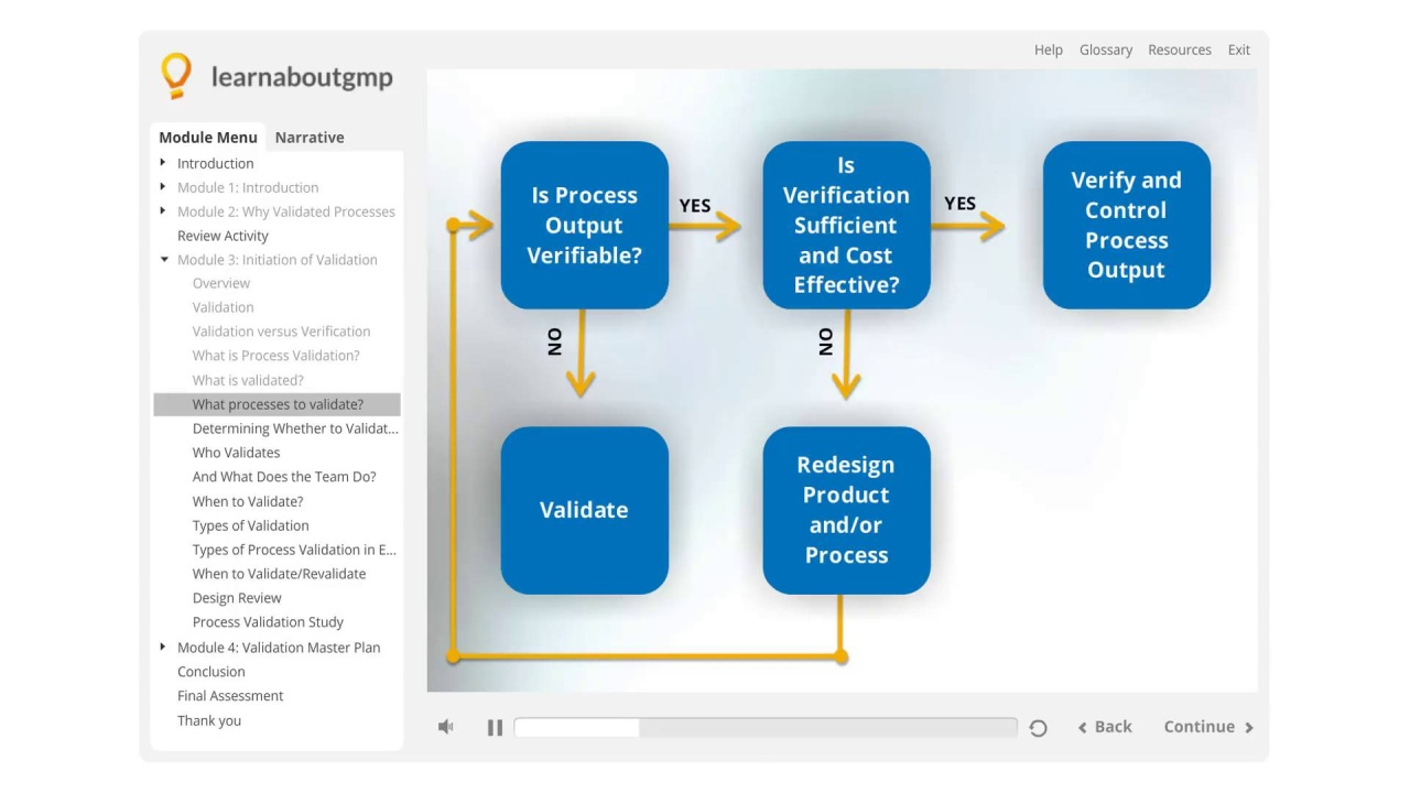 How to Decide What Processes Need to be Validated [Video ...