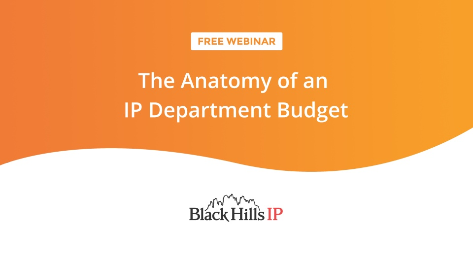 The Anatomy Of An Ip Department Budget Black Hills Ip