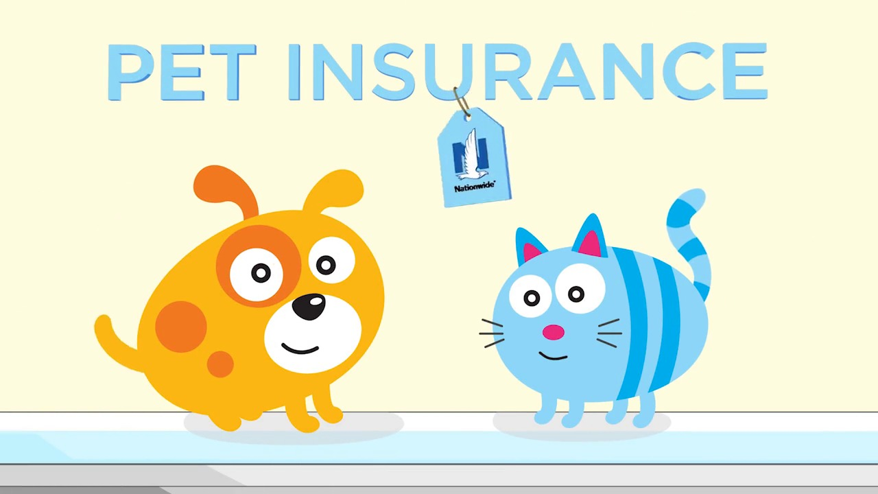 Nationwide Pet Insurance Claim Form Tekil Lessecretsdeparis Co