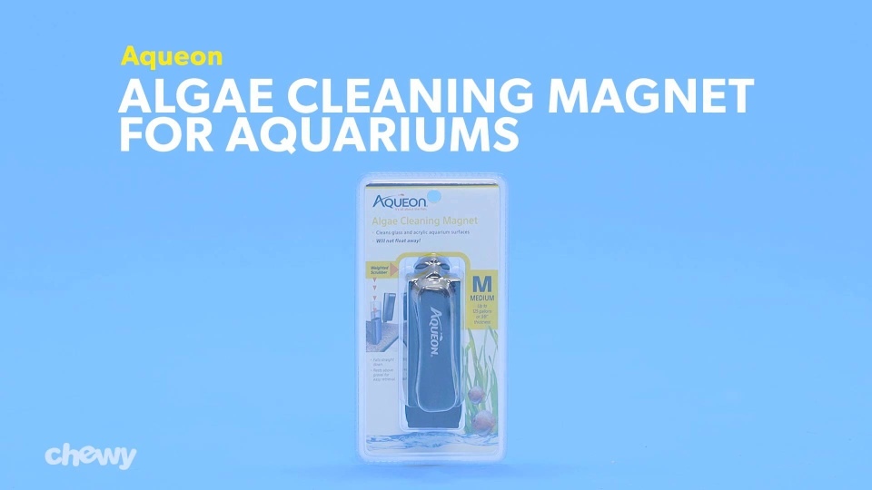 Aqueon Algae Cleaning Magnet for Aquariums, Small - Chewy com