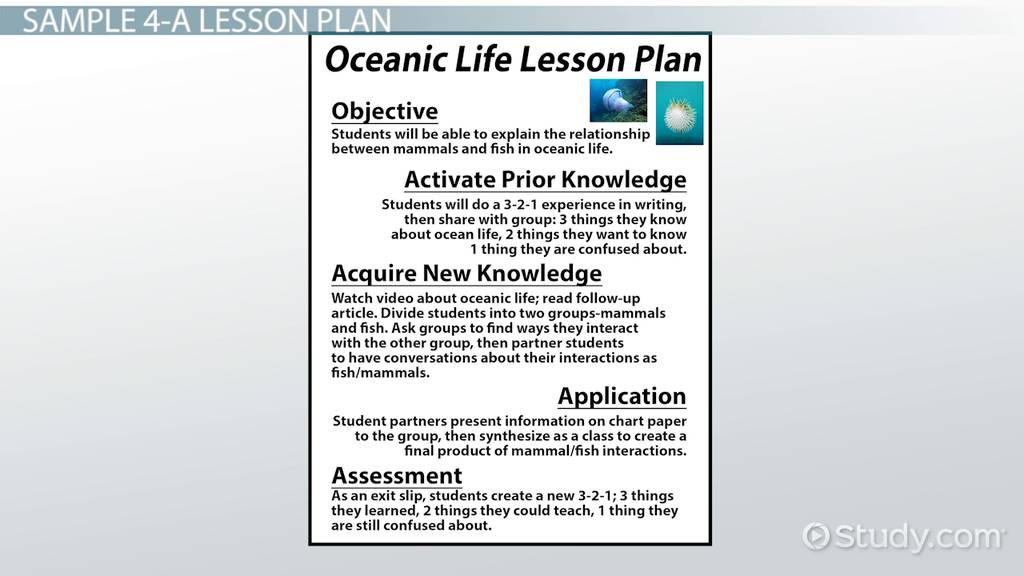 Physical Education Lesson Plan Template Zrom