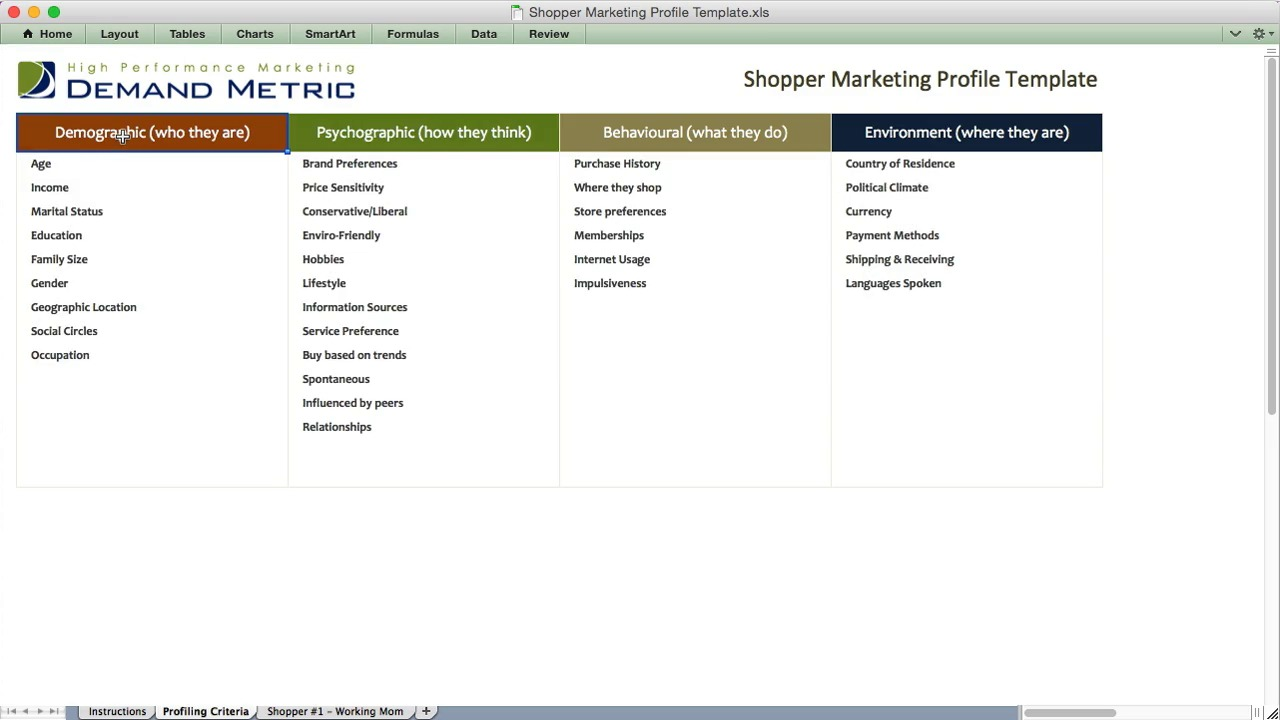 Shopper Marketing Profile Template