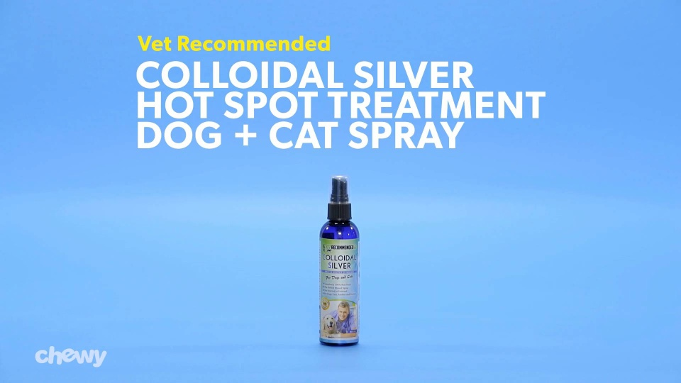 Vet Recommended Colloidal Silver Hot Spot Treatment Dog