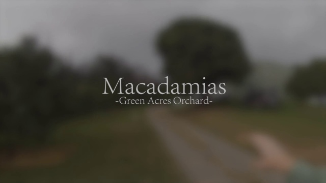 Wistia video thumbnail - Macadamia