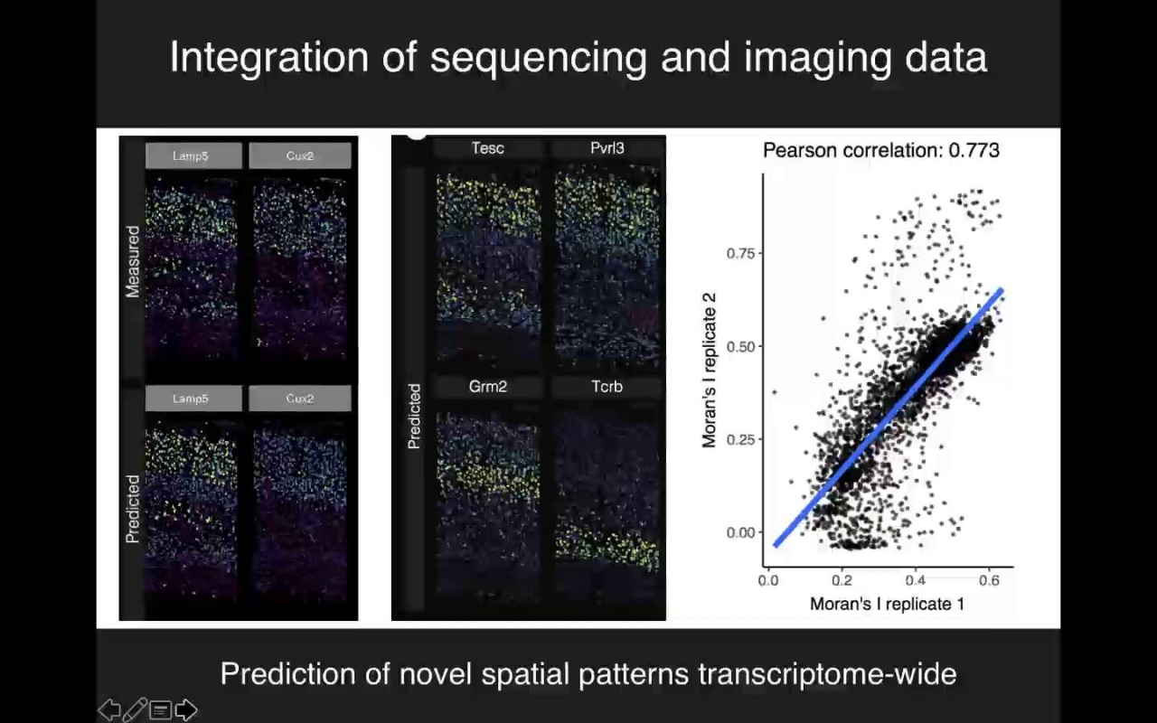 Integration of multiple types of single-cell data with Seurat v3