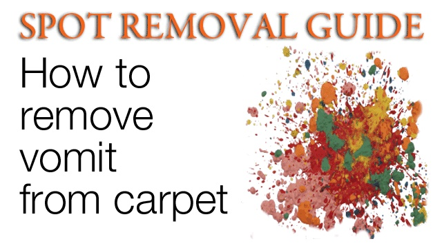 Vomit on carpet vinegar meze blog for How to clean vomit from floor
