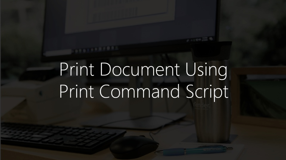 Print Document Using Print Command Script with BarTender