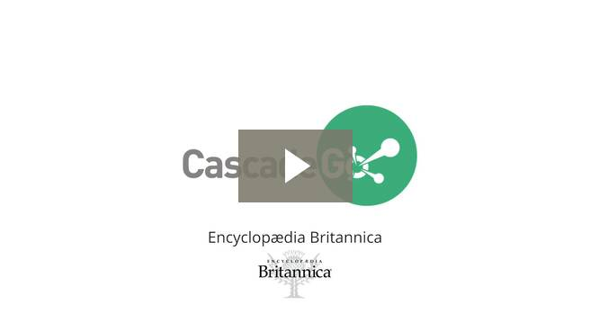 Why you should work with CascadeGo for your HR admin needs