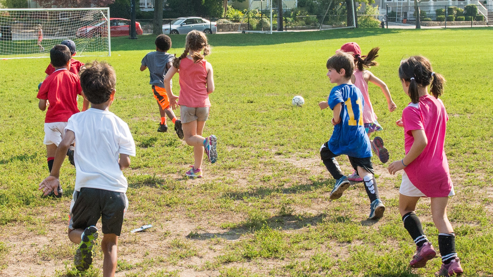 Viking Sports - Greater Boston Area Youth & Adult Sports