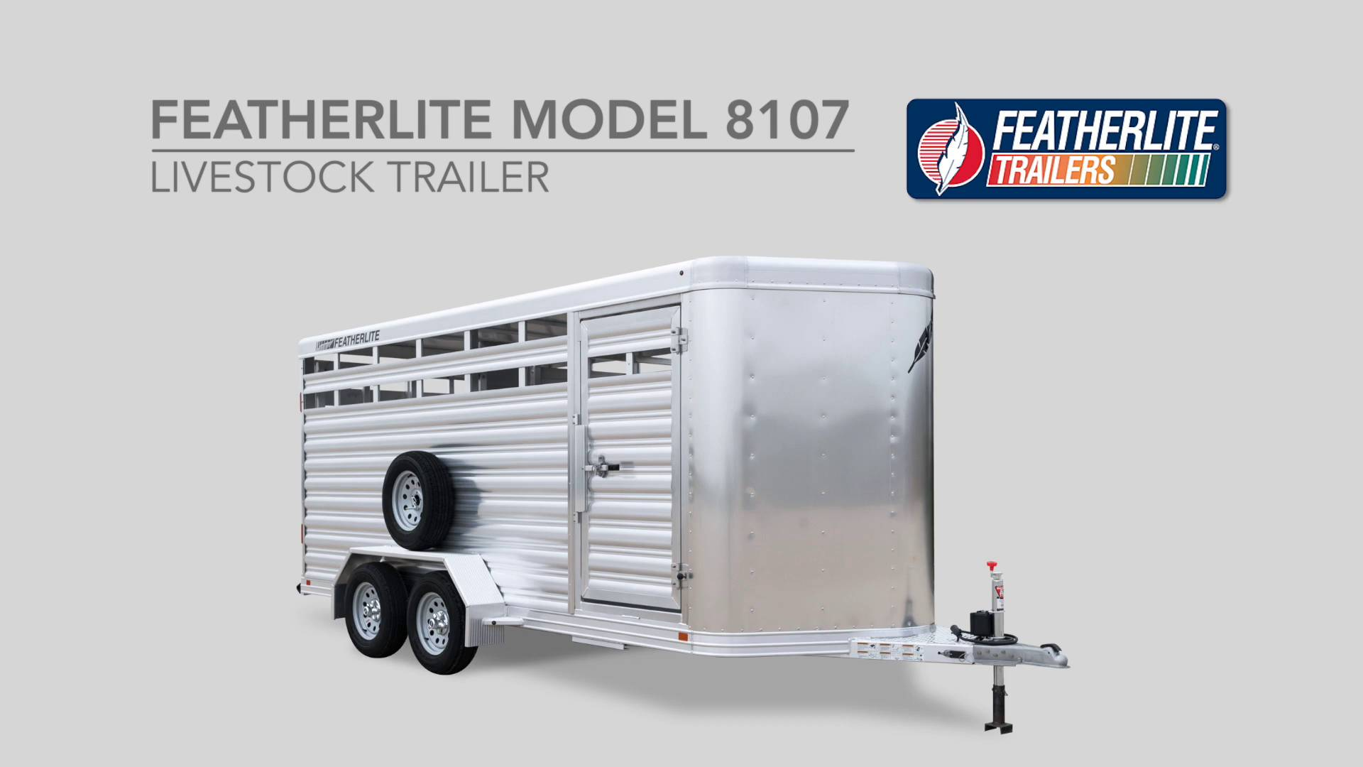 Bumper pull livestock trailers 8107 livestock trailer bumper pull livestock trailers 8107 livestock trailer featherlite stock trailers asfbconference2016 Images