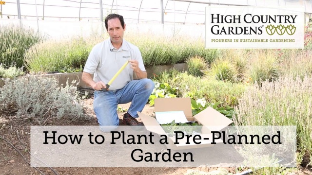 PrePlanned Gardens and Collections Garden Design – Pre Planned Drought Tolerant Garden
