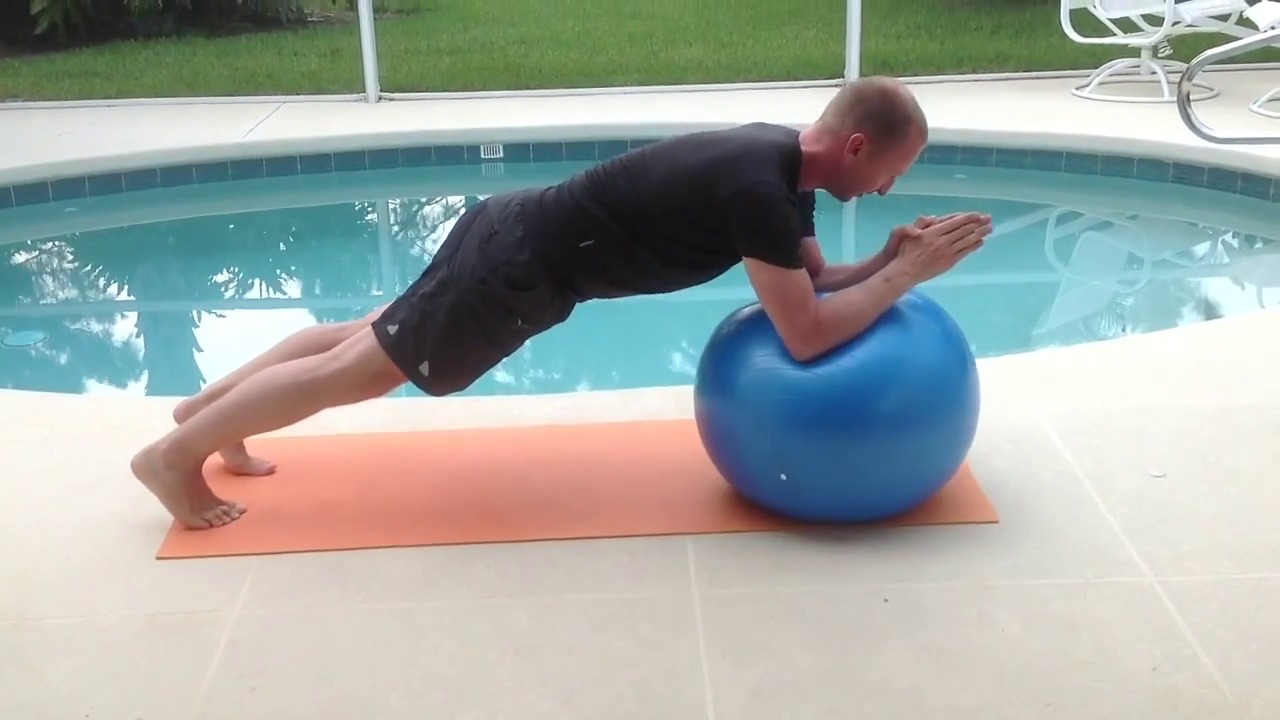 Functional Stability Training For The Core Pdf