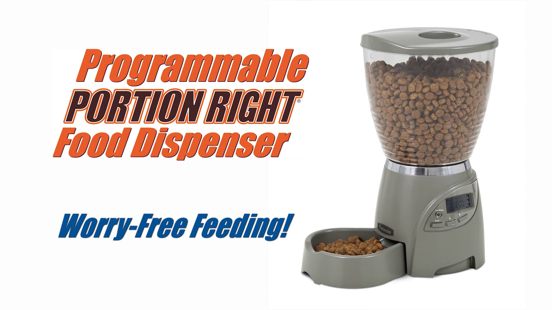 Petmate Portion Right Programmable Pet Feeder 5 lb Chewy
