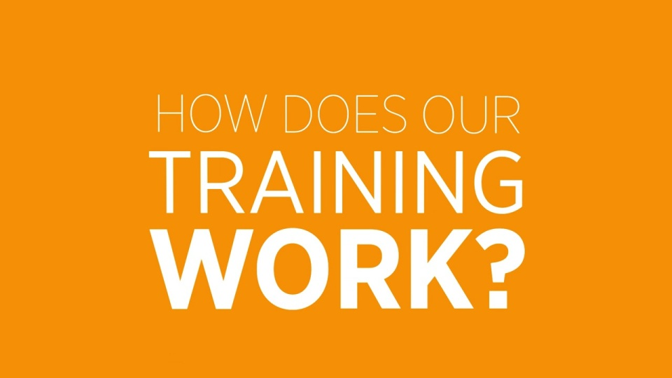 High Speed Training Over 150 Online Training Courses