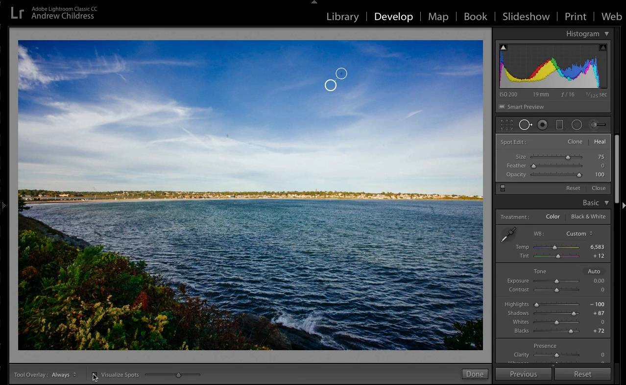 How to Use the Visualize Spots Feature in Adobe Lightroom
