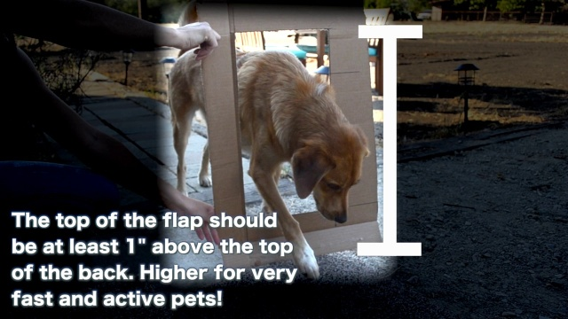 Wistia video thumbnail - How to Measure your Pet for a Pet Door