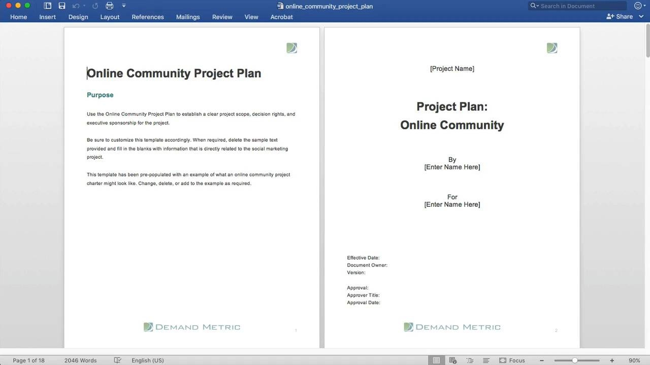 Online Community Project Plan Demand Metric - Project plan update template