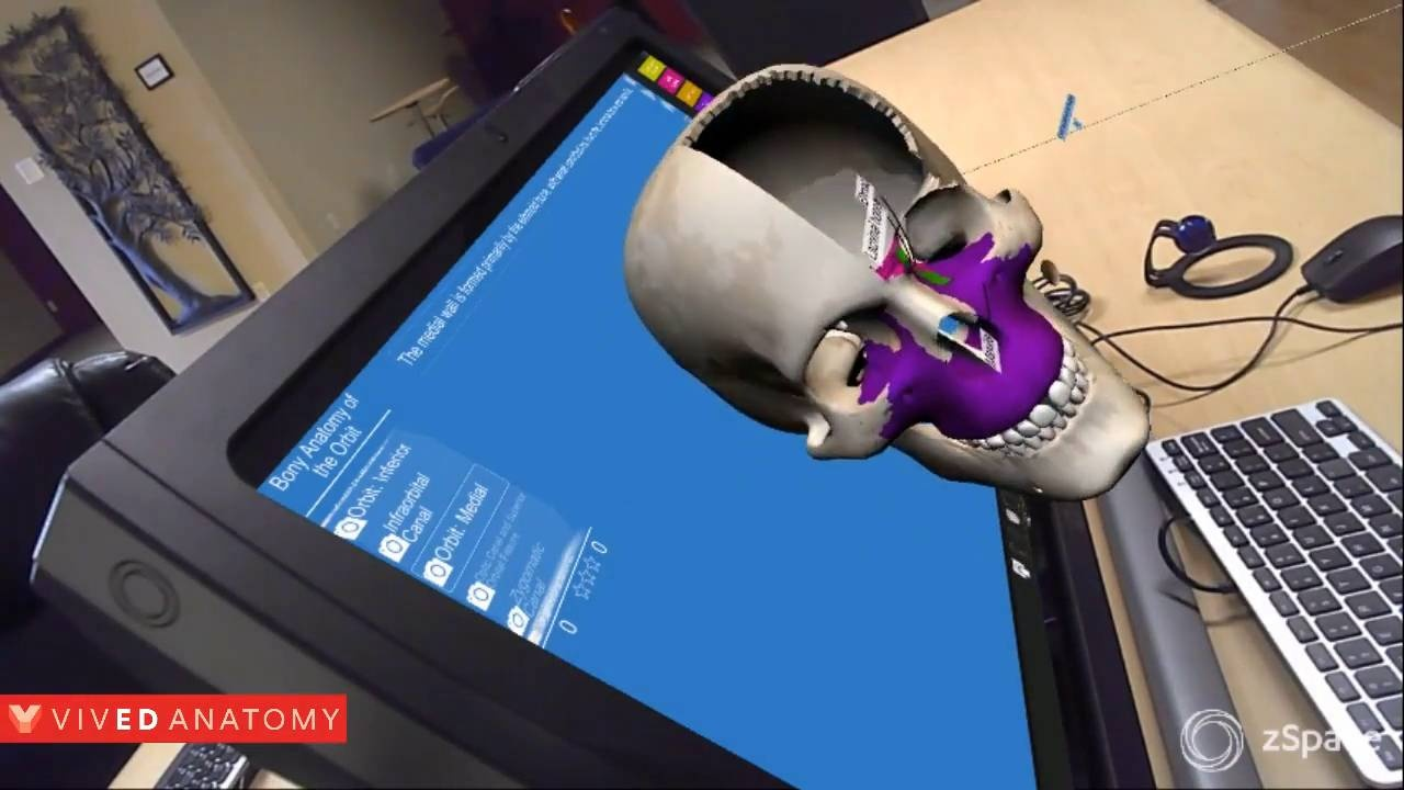 Vived Anatomy For Zspace